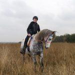 Rouke te paard